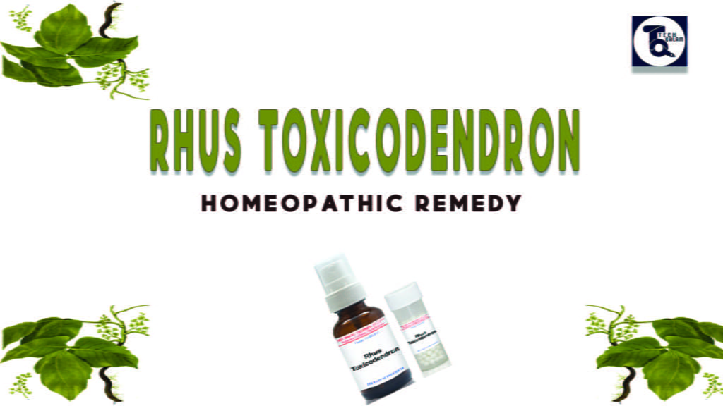 Rhus Toxicodendron Homeopathic Remedy