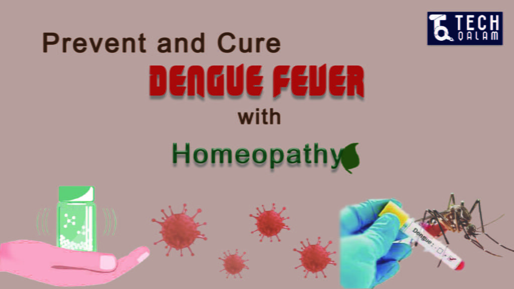 Dengue Fever And Homeopathy
